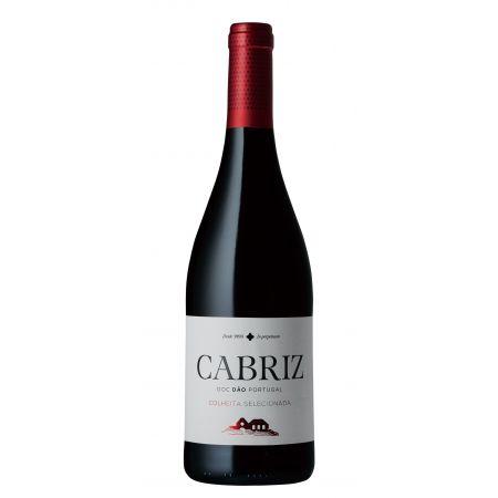 Cabriz Red img1
